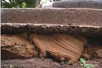 Mudjacking comes from using topsoil mixed with cement
